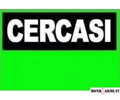 CERCO CANNE CAL. 20 TRAP PER DAYTONA