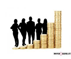 offro servizi finanziari alle famiglie,